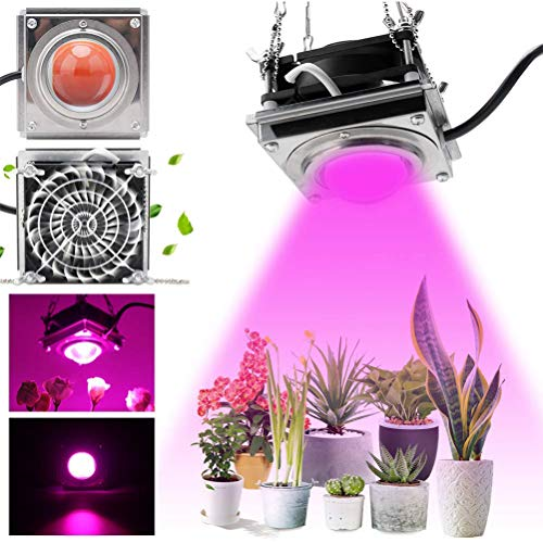 60W LED Plant Grow Light, 4000K Sunlike Full Spectrum Plants Lights con enfriamiento Disipación de calor más fuerte sin ruido, COB Grow Lamp para plantas de interior