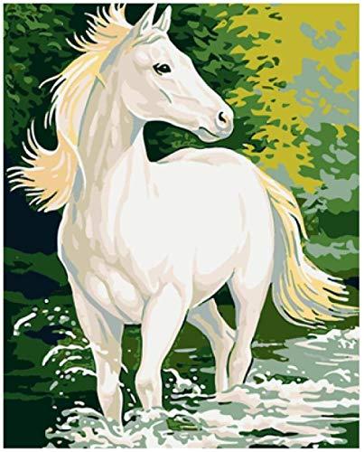 ZXlDXF Pintura al óleo por números – Caballo blanco en el agua, pintura digital para adultos, obras dibujadas por adultos niños y principiantes en lienzo preimpreso, 40 x 50 cm (sin marco)