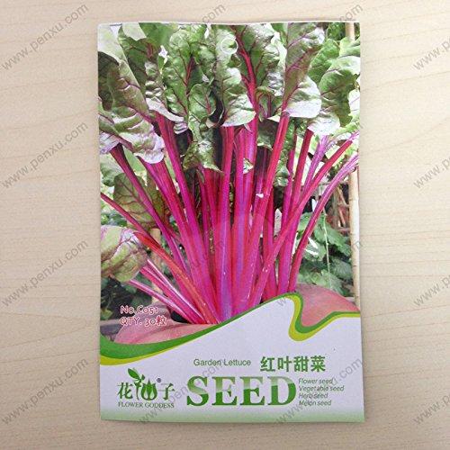 Graines originales paquet de légumes, laitue Garden Beet laisse les graines, fleurs matures 40 jours, 30 particules de graines / sac