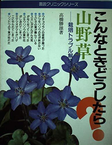 山野草―こんなときどうしたら? (園芸クリニックシリーズ (3))の詳細を見る