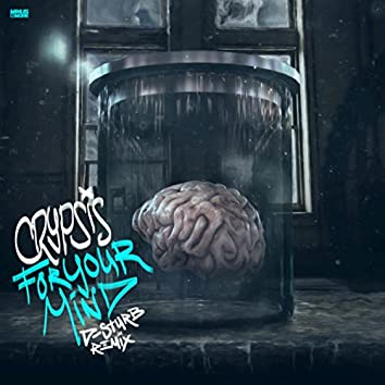 For Your Mind (D-Sturb Remix Radio Edit)