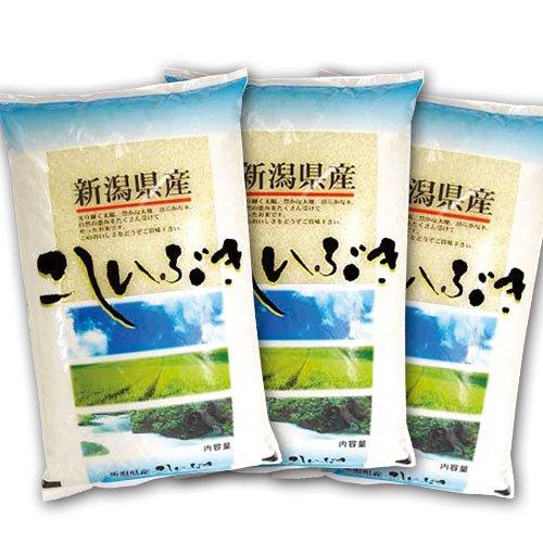 【精米】新潟県産 こしいぶき 15kg (5kg×3袋) 令和2年産 新潟県直送