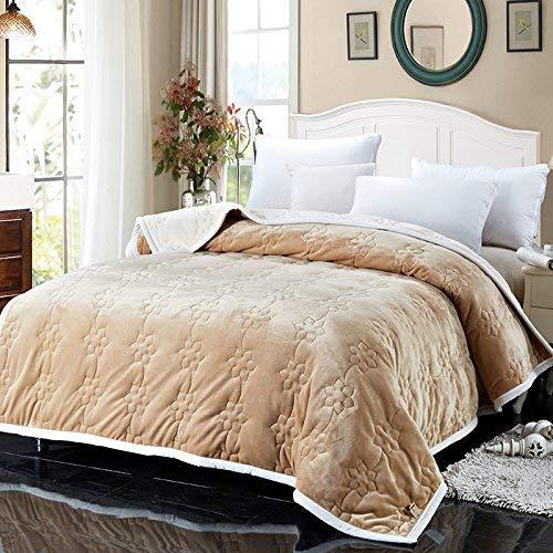 Mariisay Double Dick Automne Et Hiver Chaud Casual Chic Dortoir Coral Fleece Dorm Couverture 150 X 200 Cm Tan Un Simplicité Style Classique De La Mode (Color : Colour, Size : Size)