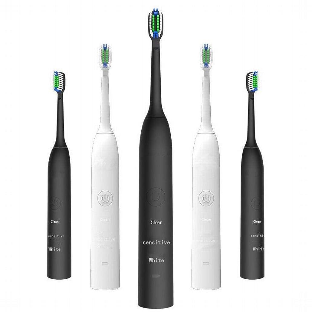 家具成功慈悲LKJASDHL 充電式電動歯ブラシ2つのブラシヘッドで3速度調整誘導充電音波振動歯ブラシキッズ電動歯ブラシ (色 : ブラック)