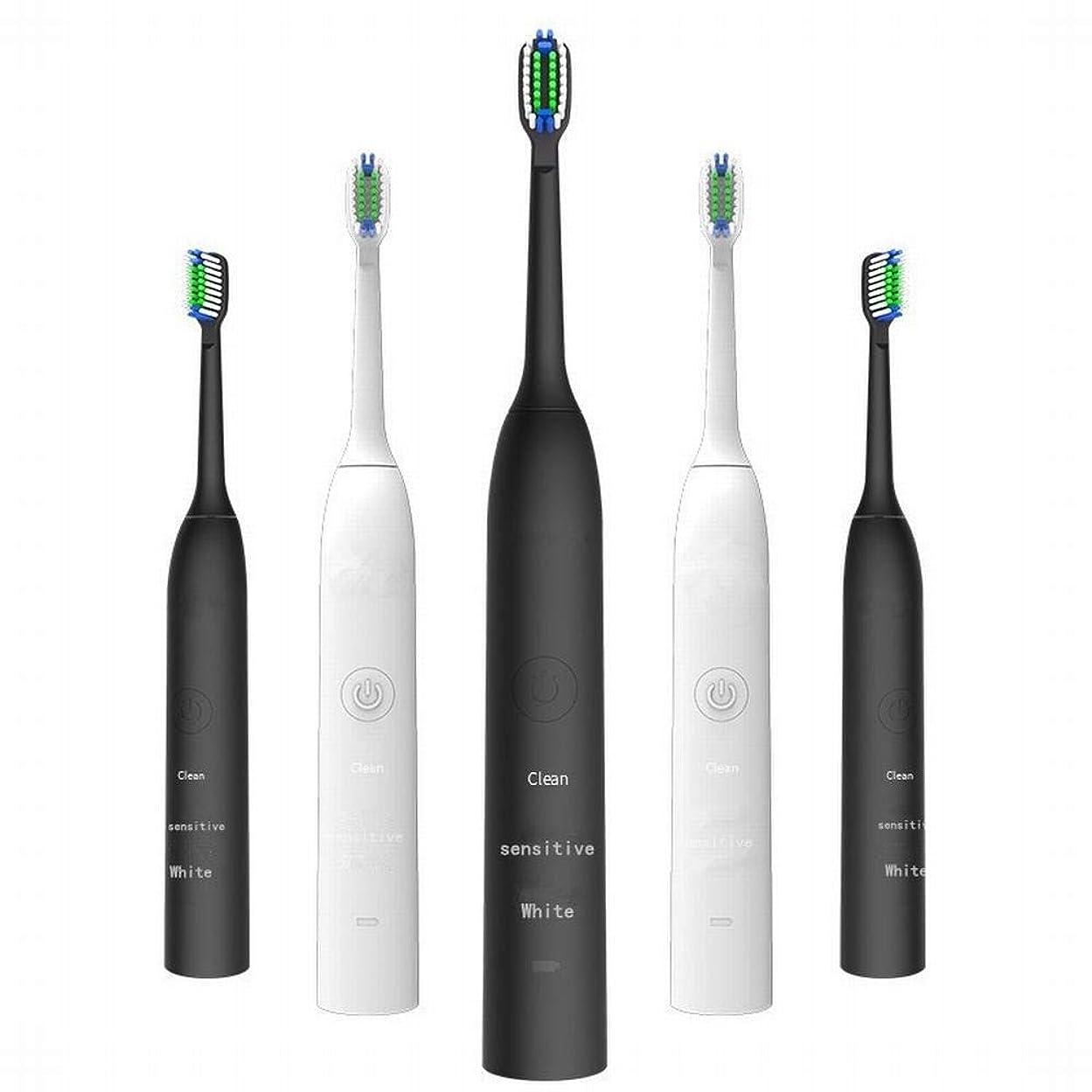 移行する代数的クマノミLKJASDHL 充電式電動歯ブラシ2つのブラシヘッドで3速度調整誘導充電音波振動歯ブラシキッズ電動歯ブラシ (色 : ブラック)