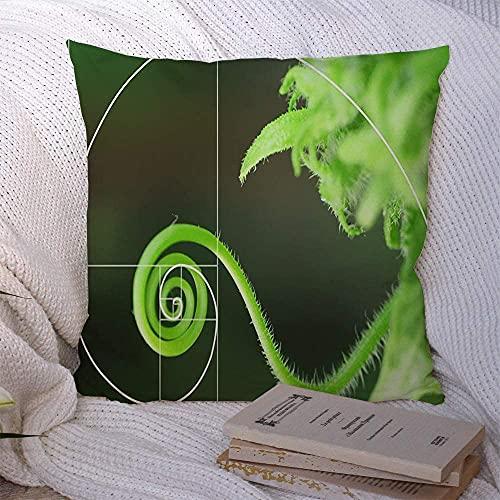 Fodere per cuscini in poliestere Caso Germoglio Viticcio Agricoltura Disposizione a spirale Rapporto proporzione naturale Linea in grafica selettiva 18x18 pollici
