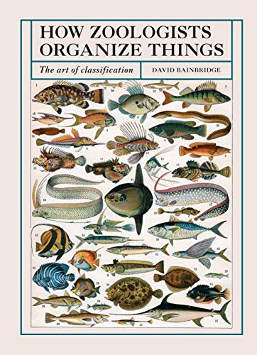 How Zoologists Organize Things:The Art of Classification (English Edition)