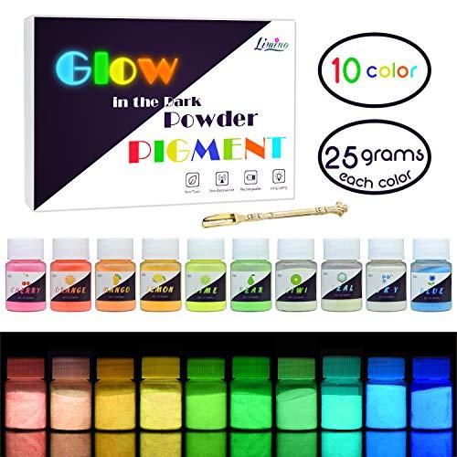 Leuchtender Epoxidharz Farbe Pigment - 10 x 25g Farben Im Dunkeln Leuchtendes Pigmentpulver für Slime, Nagel - Epoxid UV Harz Farbpigment Leuchtpulver für Nail Art, Malen, Acrylfarbe und DIY Basteln