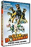 Dobermann Gang (The Doberman Gang, Spanien Import, siehe Details für Sprachen)
