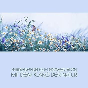 Entspannende Frühlingsmeditation mit dem Klang der Natur