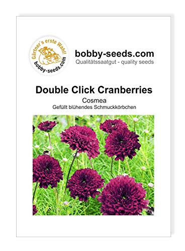 Blumensamen Double Click Cranberries Cosmee Portion