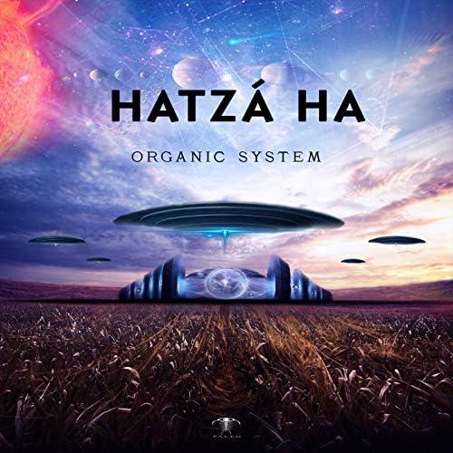 Hatzá Ha
