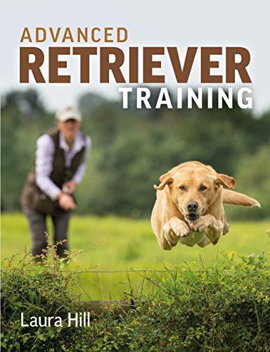 Advanced Retriever Training (English Edition)