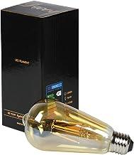 Edison Vintage gloeilamp E27, vintage gloeilamp, warmwit, ledlampen, vintage antieke gloeilamp E27 6 W (vervangt 60 W), re...