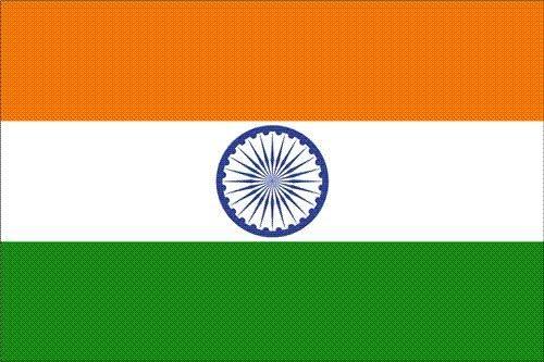 Amazon.com: INDIA COUNTRY FLAG GLOSSY POSTER PICTURE PHOTO new delhi mumbai  hindi sabha: Prints: Posters & Prints