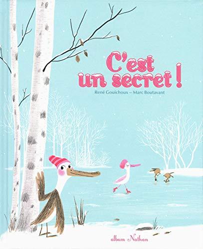 C'est un secret ! (Album Nathan) (Tapa dura)