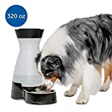 PetSafe Healthy Pet Water Station, Dog and Cat Water System with Stainless Steel Bowl, Large, 320 oz.