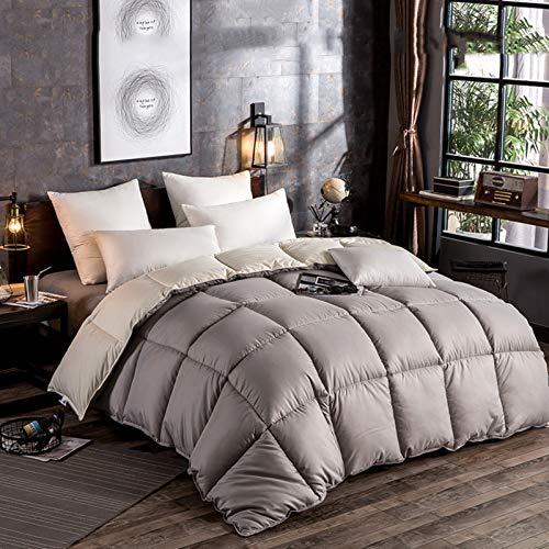 Bedding Invernale Piumone Caldissimo Piumino in Piuma D?Oca di Altissima qualità, Extra-Leggero,Matrimoniale, Fodera in Puro Cotone (Grey,220 * 240cm 3kg)