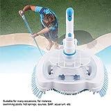 Aspirapolvere piscina, Testa aspirapolvere per piscina, strumento professionale per la pulizia della piscina Testa aspirapolvere per piscina Strumento per la pulizia dello stagno per fontane piscine