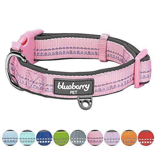 Blueberry Pet 2,5cm L 3M Reflektierendes Neopren-Gepolstertes Hundehalsband in Pastell-Babypink, Groβe Halsbänder für Hunde