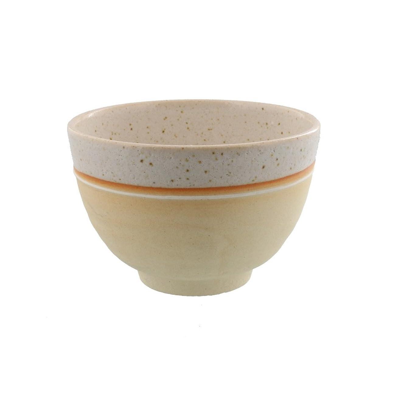 リダクターおもちゃ間テーブルウェアイースト 抹茶茶碗 焼きしめ一珍 信楽焼 茶道具 化粧箱入り 抹茶碗 茶碗 和食器