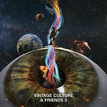 Vintage Culture & Friends 3