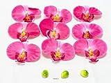 Artif-déco.com - Tetes fleurons Orchidee Phalaenopsis Artificielles X 9 et 3 Boutons Superbe Rose Fushia - Couleur: Rose Fushia