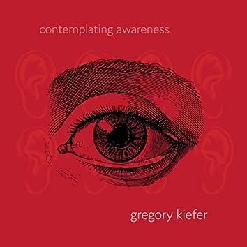 Contemplating Awareness