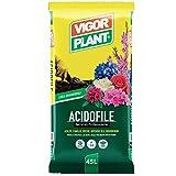 Zoom IMG-1 vigorplant terriccio universale per piante