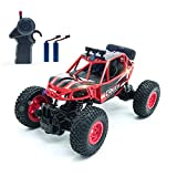 Remote Control Car, Kookids RC Car Alloy Material Body 2.4Ghz with 2 Rechargeable Batteries, Electric Toy Car for All Adults & Kids…