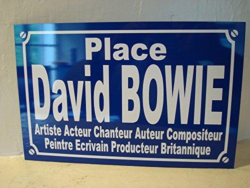 DAVID BOWIE plaque de rue objet collection cadeau pour fan déco originale