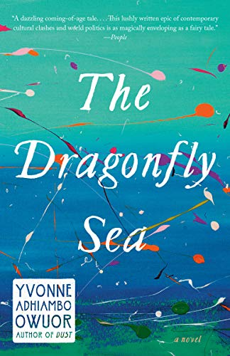 The Dragonfly Sea: A novel