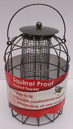 Hanging Squirrel Proof Guard Bird Feeder - Peanut Nu