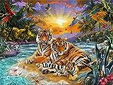 DIY 5D Kit de Pintura de Diamante para Niños adulto regalo Punto De Cruz Kit Artes Manualidades Lienzo Pared Decoración Llegada de animales tigre -40x30cm