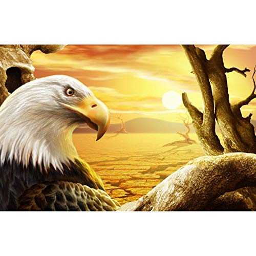 5D DIY Diamond Painting Full Round Drill Cross Stitch Kit Diamond Painting Number Kits Embroidery Art for Adults Eagle 15.7x11.8 in By Bemaystar