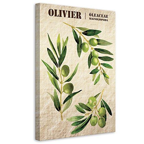 Vertikale Décoration Murale Tableau Toile Branches d'Olivier Style Botanique 60 x 40 cm