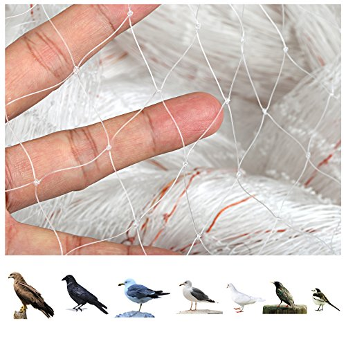 GWHOLE 33 x13 Ft Garden Netting for Tree and Plant Protection,Translucent