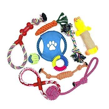 WeFine Lot de 10jouets à mâcher en corde de coton 100% naturel pour chiens de petite et moyenne taille