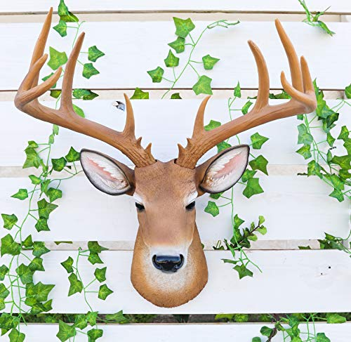 Ebros Rustic 12 Point Buck Trophy Taxidermy Wall Decor Deer Head With Antlers Sculpture Hanging Plaque Figurine 21.5'H Hunters Cabin Lodge Country Home Decorative Animal Heads Stags