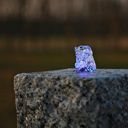 CLGarden LED Ring RGB Multicolor für Bunte Springbrunnen Beleuchtung Farbwechsler