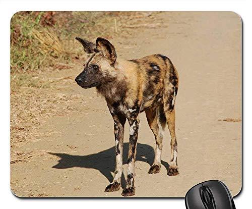 Yanteng Juego Alfombrillas de ratón, Alfombrilla de ratón, Sudáfrica Wild Nature Wildlife Animals Wild Dog