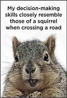 My Decision-making Skills Closely Resemble Those Of A Squirrel When Crossing the Road. funny fridge magnet (ep)