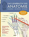 Das Lehrbuch der Anatomie: Kolorieren Beschriften Bestimmen - Kurt H. Albertine  Ph.D.