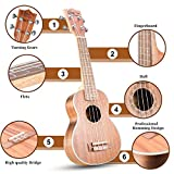 Immagine 2 hricane ukulele soprano professionale opaco