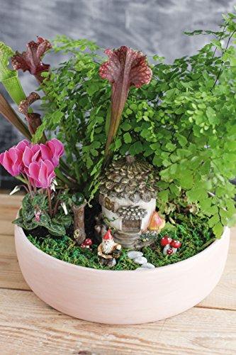 Mini Gardening: Fairy-Set