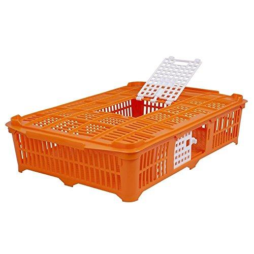 Geflügeltransportkiste für Tauben/Wachteln, orange, 67x40x13 cm