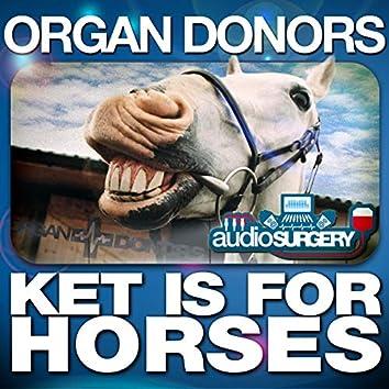 Ket Is for Horses (Darren Styles Remix)