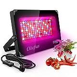 Olafus Grow Light 1000W, Lámpara para Cultivo de Plantas Espectro Completo de Luces 144 LED con 92 Rojo 22 Azul 4 IR 22 Blanco, IP66 Impermeable Acelerar Crecimiento Floración Fructificación