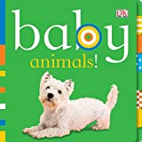 Baby Animals! (Chunky Baby) (English Edition)