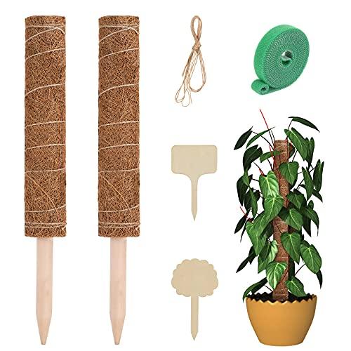 Weifeng Pflanzenstütze Pflanzenstab Moosstab Monstera Ppflanze Kokosstab Rankhilfe Zimmerpflanzen Pflanzstab Kokos